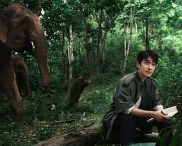 和朱一龙一起,守护大象的纹路