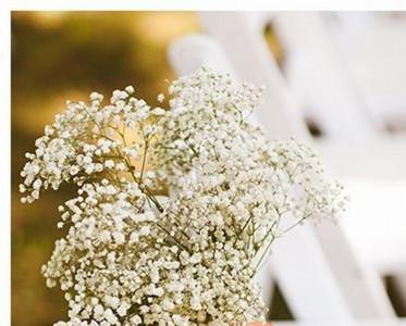 满天星摇身一变做主角 成为点缀婚礼的梦幻云彩