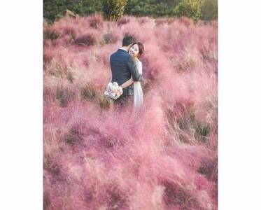 以大自然为背景 描绘爱情最美的模样