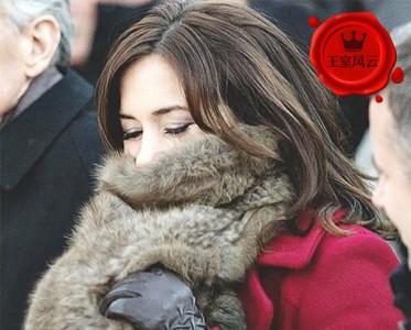 王室风云:你们在听雪落下的声音 我在偷师王妃围巾系法