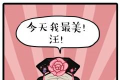 """听说悦诗风吟&吾皇万睡联合举办的第一届""""萌位之争""""大赛开始啦!小仙女们快往前排就坐~围观吾皇&巴扎黑新出炉的新年故事!没看"""