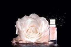 迪奥续写格兰维尔玫瑰传奇诗篇 为肌肤注入不竭活力