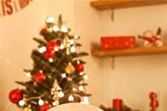 和他一起装点你专属的圣诞树,记录下这个难忘时刻